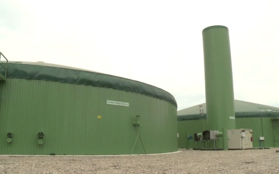 Biogazownia – przemyślany wybór